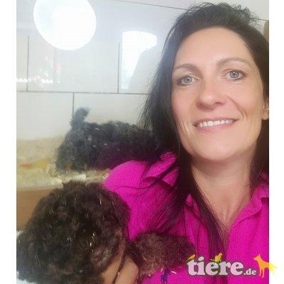 Seminar für Hundezüchter in Cottbus