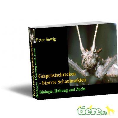Ebook:Gespenstschrecken–bizarre Schauinsekten